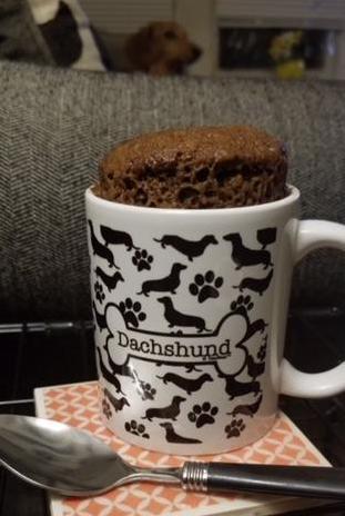 mug cake with max